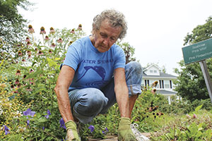 Master Gardener Mary Ann Kincaid, of Virginia Beach, helps to maintain the gardens at the Hampton Roads Agricultural Research and Extension Center.
