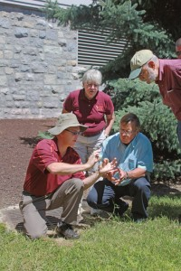 Researcher Shawn Askew shows participants weeds and grass.