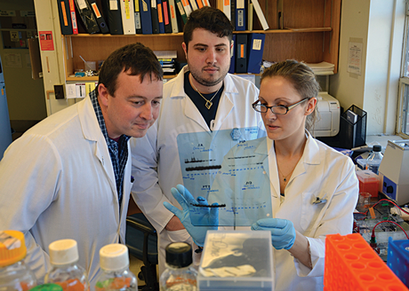 Clay Caswell (left), assistant professor of bacteriology, seeks to better understand brucellosis with Ph.D. students James Budnick and Lauren Sheehan.