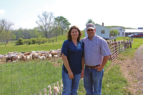 Mandy and Chris Fletcher, of Abingdon, Virginia, have purchased rams from the ram test sale for the past four years and have improved their flock's genetics by selecting for growth and parasite resistance.  As their flock's genetics have improved, the Fletchers have seen a decrease in health care costs and flock mortality.