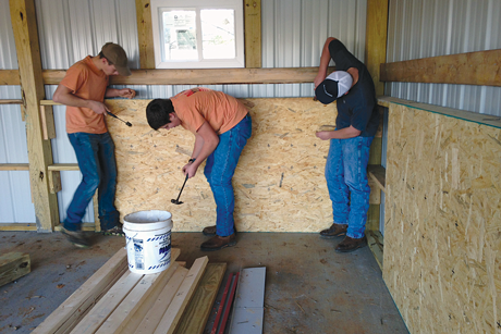Holston High School students played an important role in finishing the inside of the barn that was built using the grant funds. Once the structure was up, they constructed walls and sides to keep the animals safe.