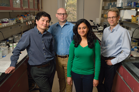 "Fralin Life Science Institute's Vector-Borne Disease Research Group team members, from left: Zhijian ""Jake"" Tu, professor of biochemistry; Brantley Hall, biochemistry graduate student; Atashi Sharma, entomology graduate student; and Igor Sharakhov, associate professor of entomology"