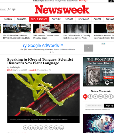 Newsweek Screen Shot