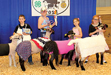 Virginia Junior Livestock Show