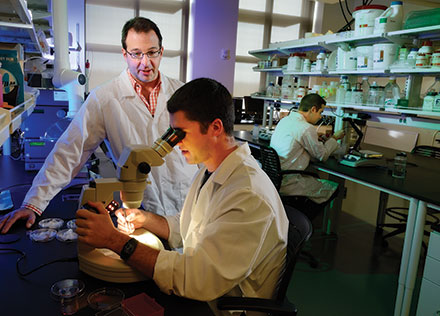 Justin Barone develops synthetic fibers that could eventually be used to create artificial limbs.