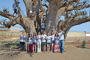 Virginia Tech students stand under a large baobab tree as they show off their Hokie pride.