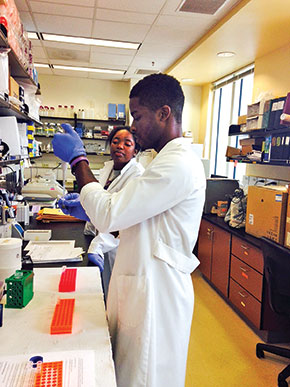 State University, participate in a program made possible by the Diversity Incentive Fund that exposes them to soybean breeding.