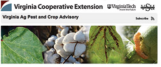 Virginia Ag Pest Advisory