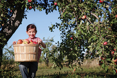 Agritourism can boost farmers' revenue