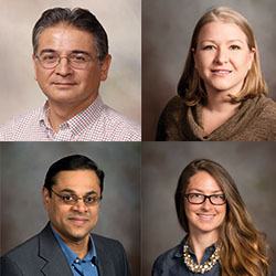 New faculty in CALS