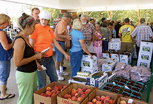 Produce auction expands economic avenues for farmers