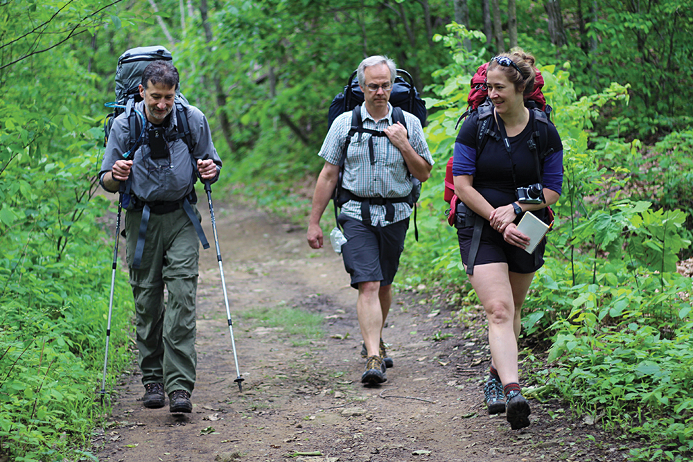 Three hikers on a trail in the woods.