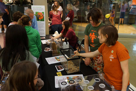 Jackie Brown, Molly Darr, and Whitney Weaver show off bugs at the Science Museum of Western Virginia.