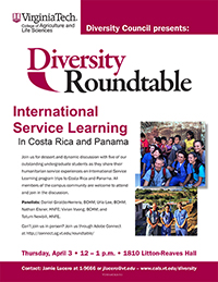 Diversity Roundtable