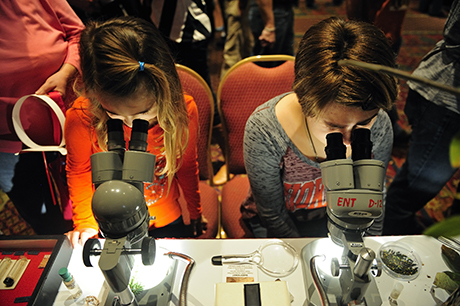 Hokie Bugfest was held at the Inn at Virginia Tech. Attendees look through microscopes in order to see beetles and the damage they do to the Hemlock trees up-close.