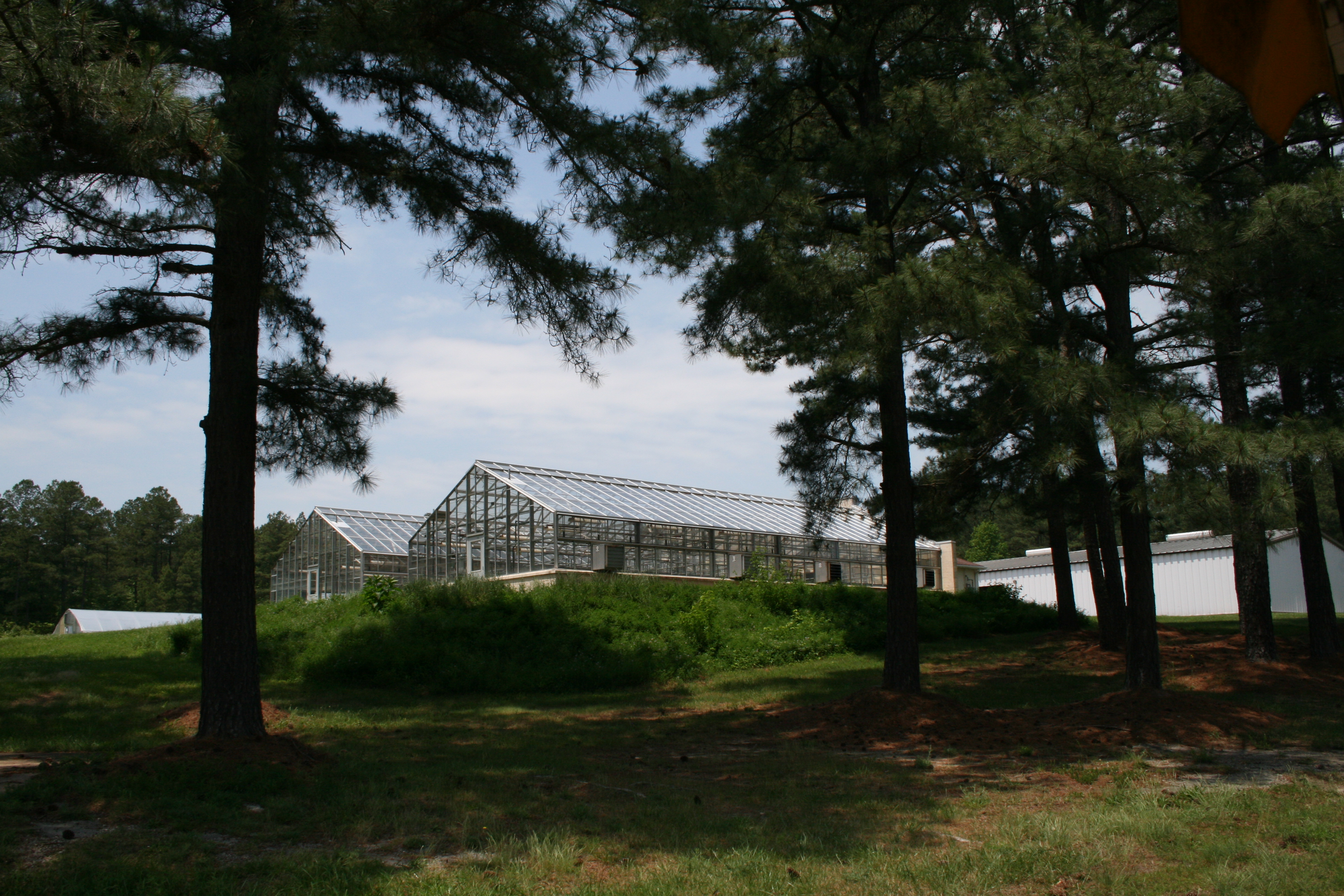 Southern Piedmont AREC greenhouses