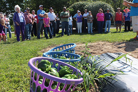Kentland Farm Field Day